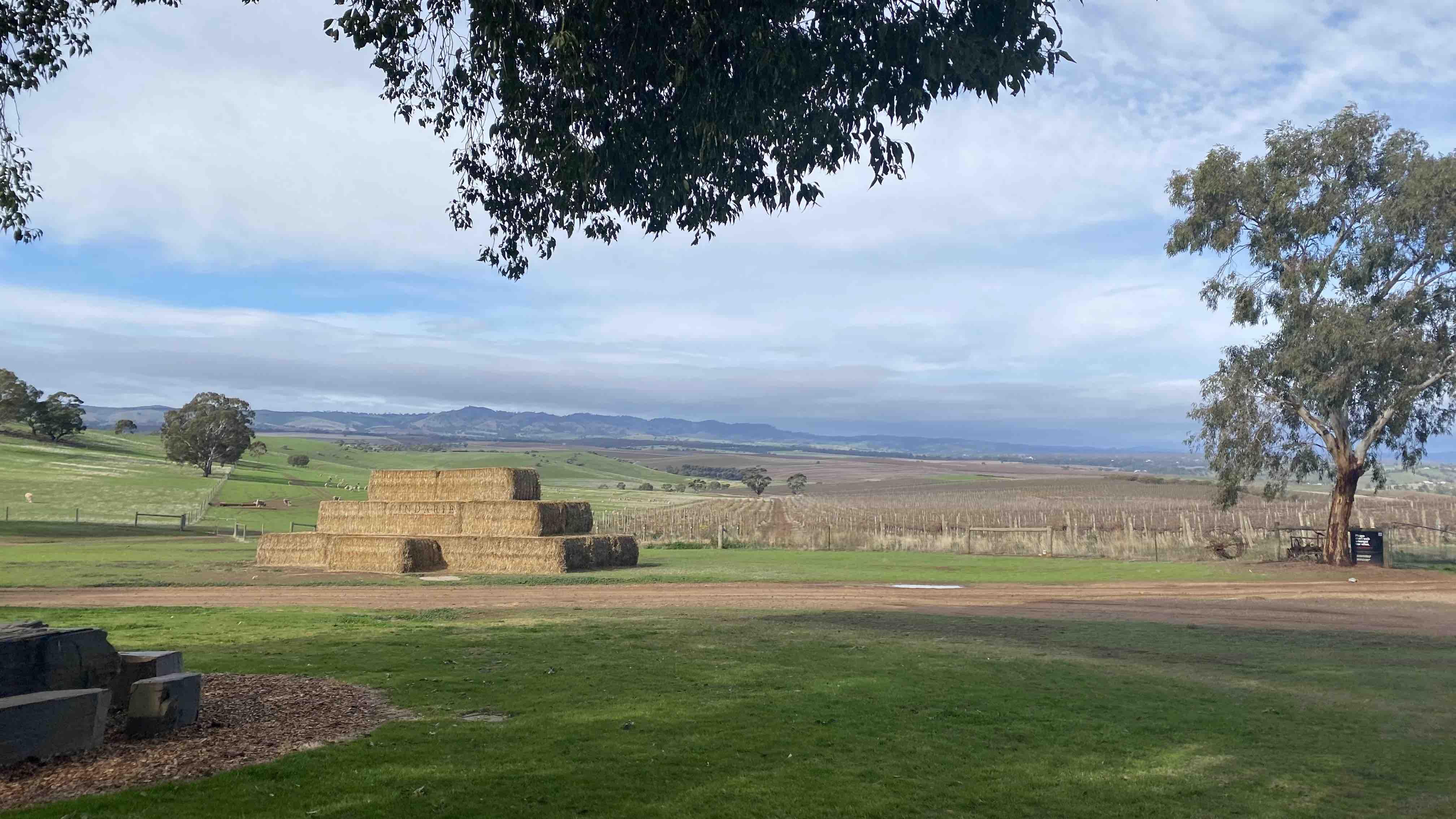 pindarie winery barossa valley