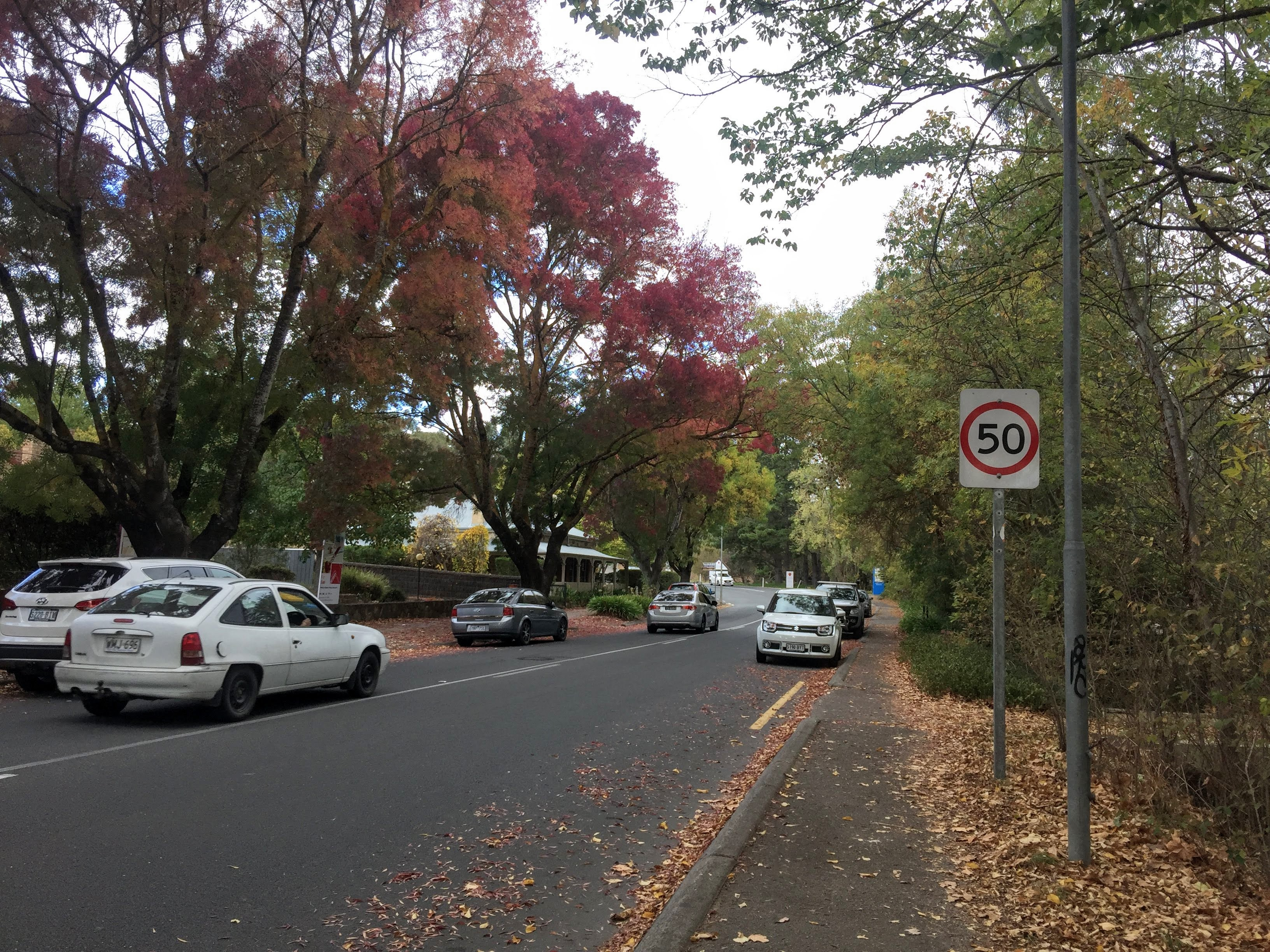 Streets of German Town - Hahndorf