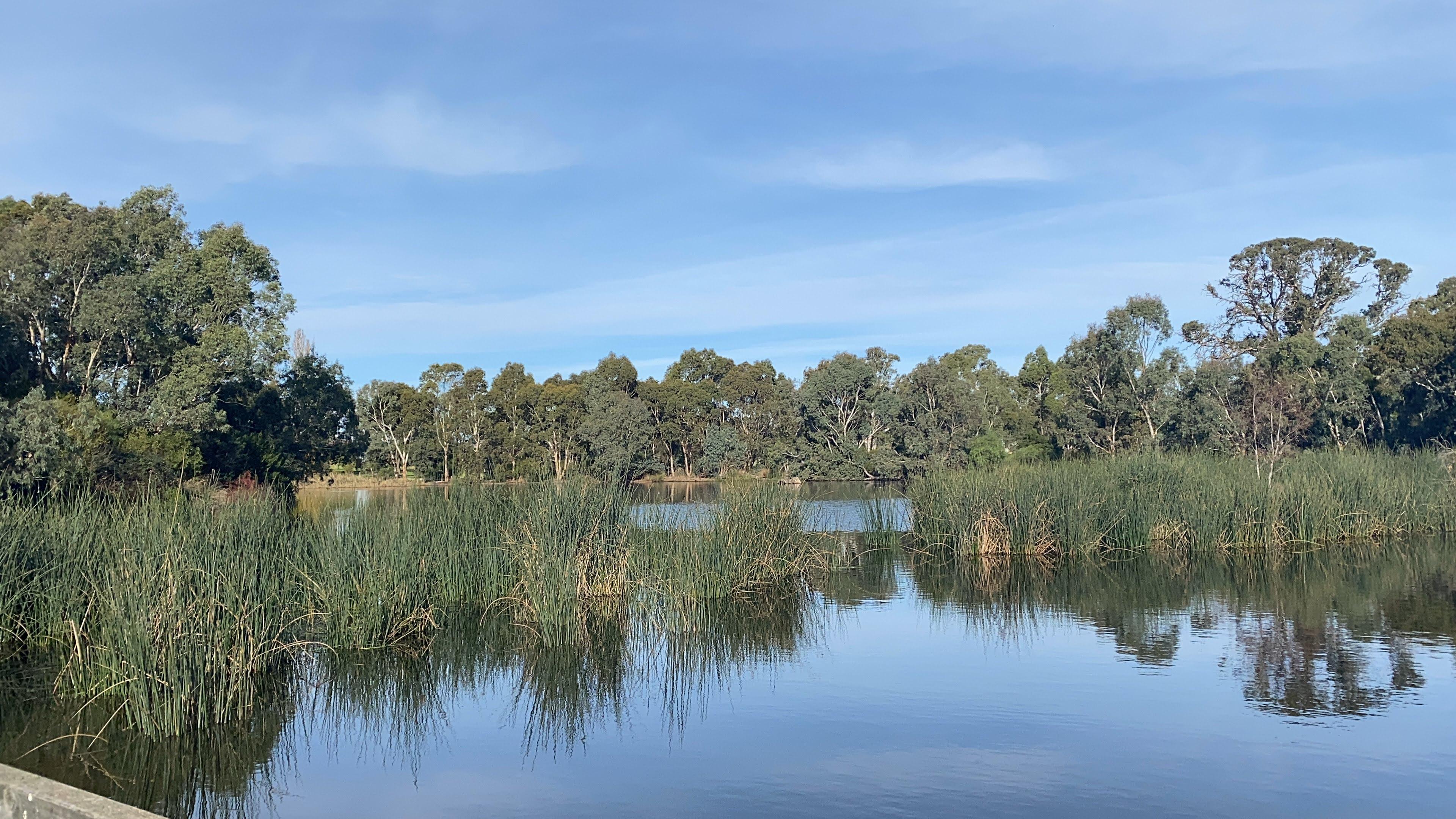 Larating Wetlands Mt Barker SA